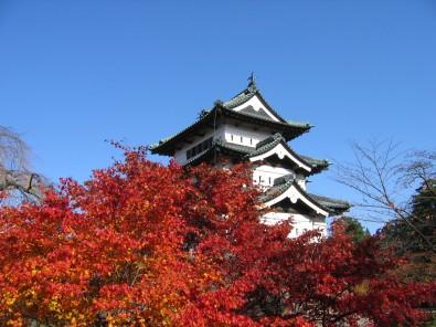 弘前城菊ともみじまつり