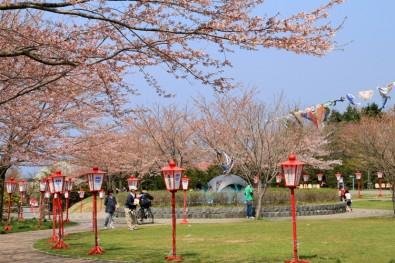お花見スポットの愛宕公園