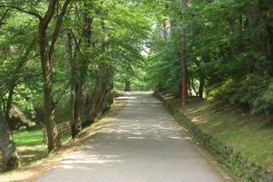 西の郭の蓮池脇から二の丸へと進む坂道