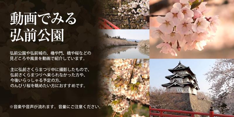 動画でみる弘前公園 弘前公園や弘前城の、櫓や門、橋や桜などの見どころや風景を動画で紹介しています。主に弘前さくらまつり中に撮影したもので、弘前さくらまつりへ来られなかった方や、今後いらっしゃる予定の方、のんびり桜を眺めたい方におすすめです。