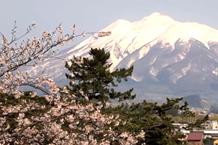 弘前城(弘前公園)「本丸からの眺め」