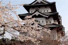 弘前城(弘前公園)「弘前城と桜」