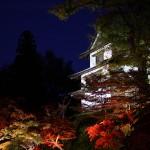 色彩鮮やか!2013年の弘前城菊と紅葉まつり