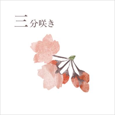 三分咲き 意味 標本木の樹冠で約3割の花が開いた状態