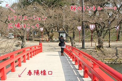 弘前公園(弘前城)西濠とボート スポット詳細1