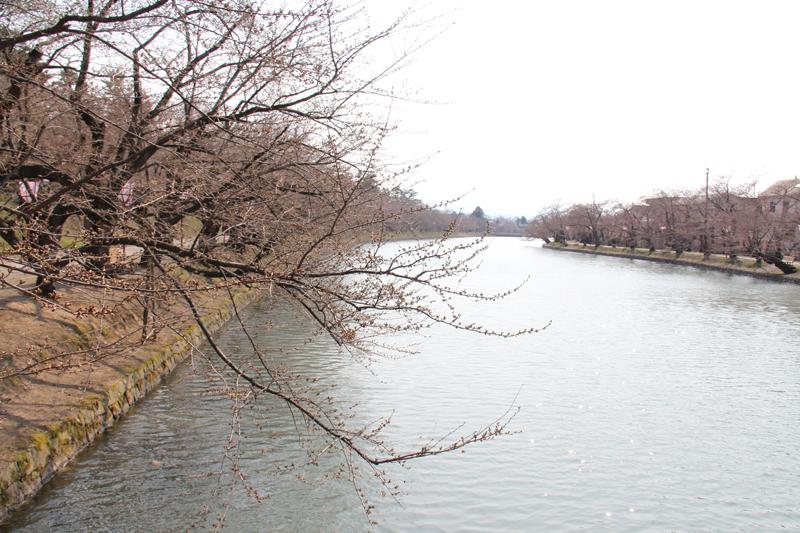 弘前公園(弘前城)・西濠とボート 今の様子