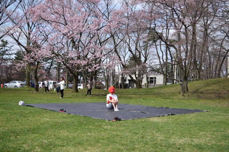 弘前公園(場所取り)