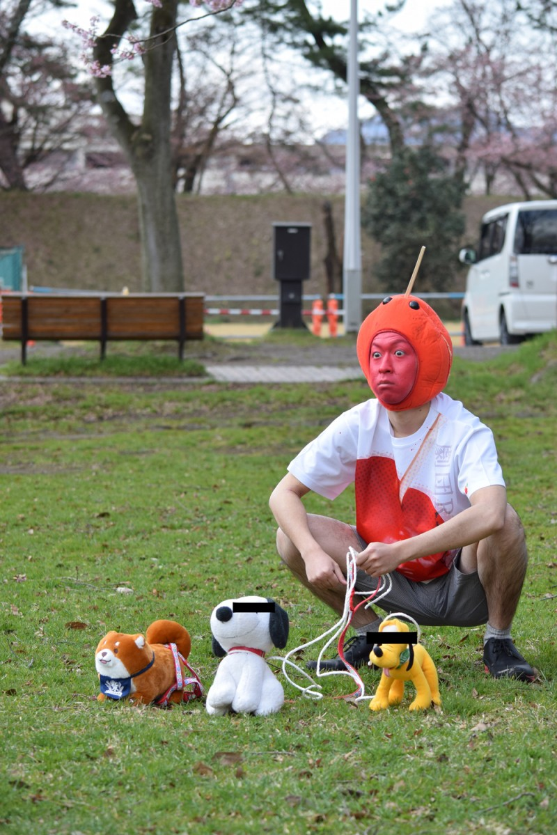 弘前公園 ペットの散歩は禁止
