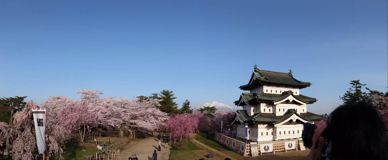 桜と岩木山と弘前城天守