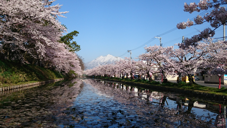 弘前公園 外濠北側と岩木山