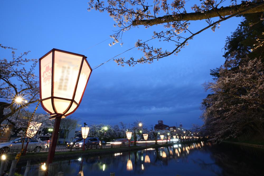 東門付近 弘前公園・夜桜