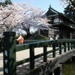亀甲橋 (カメノコバシ)
