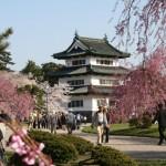 本丸内から見た弘前城