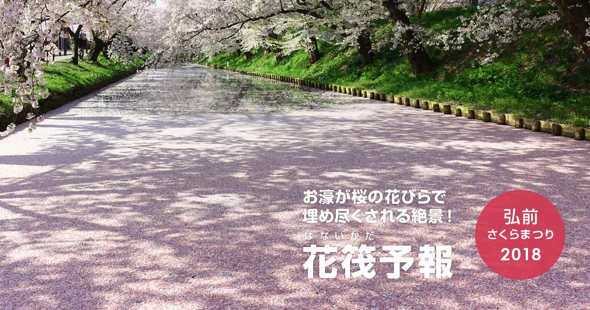 弘前公園 花筏(はないかだ)予報 2018
