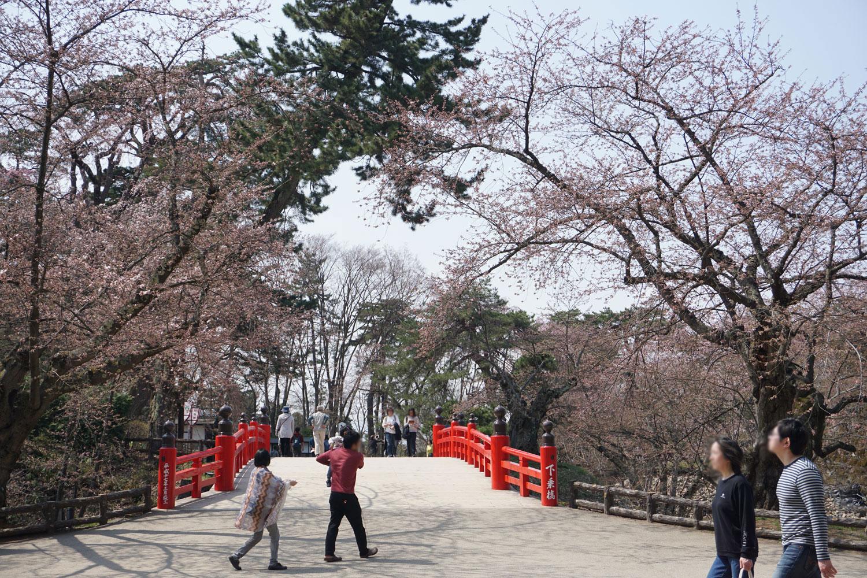 弘前公園 (2018年4月20日 撮影)
