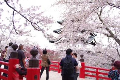 弘前城下乗橋にて撮影