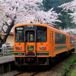みんなで行きたい!青森県のお花見スポット!