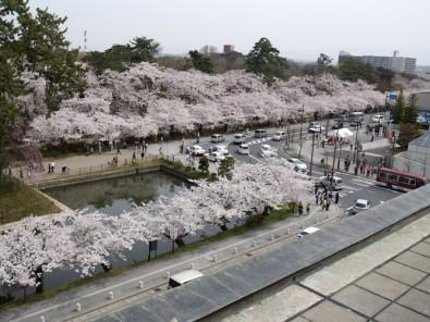 4月3日付で日本気象協会から青森県弘前市「弘前公園」の桜の開花予想が発表されました
