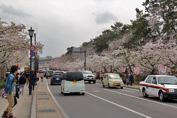 弘前さくらまつりの様子 弘前公園・弘前城で弘前のさくらまつりを楽しもう