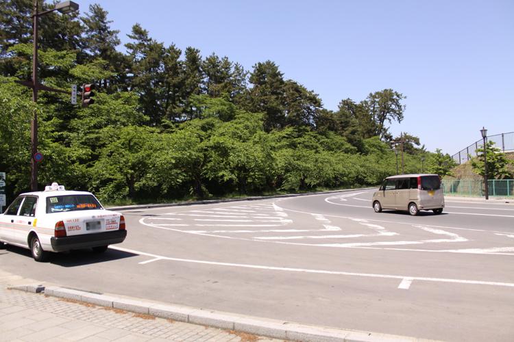東門付近の桜の木の様子2013年5月31日現在