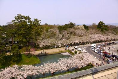 弘前公園 弘前市役所からみた眺め 桜