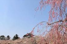 弘前城(弘前公園)「二の丸から見る弘前城」