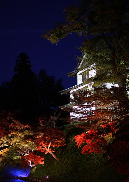 弘前城菊と紅葉まつりの様子