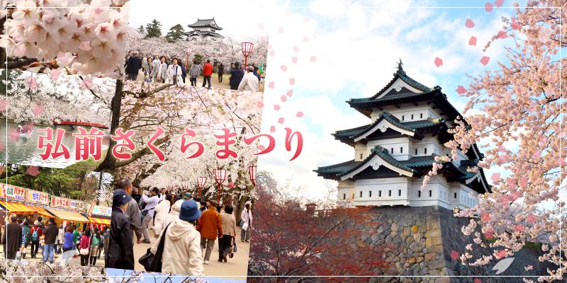 2014年の弘前さくらまつりは4月23日~5月6日まで開催!