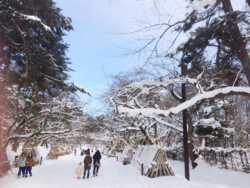 2014年弘前雪灯篭まつり 最終日昼 弘前城と灯篭の様子