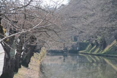 2014年4月2日 弘前公園(弘前城)外堀(東門付近)の様子