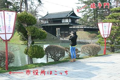 弘前公園(弘前城)・外濠の花筏スポット詳細1