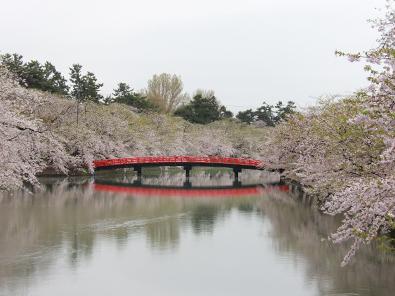 弘前公園(弘前城)・一陽橋から春陽橋を見た様子