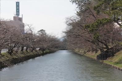 弘前公園・弘前城「弘前市役所側の外堀」の様子(2014年4月7日)