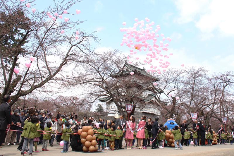 本日開幕した弘前さくらまつり2014の様子 ピンクのハートの風船が青空に放たれました