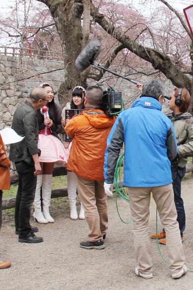 本日開幕した弘前さくらまつり2014 ご当地アイドル「りんご娘。」もいました