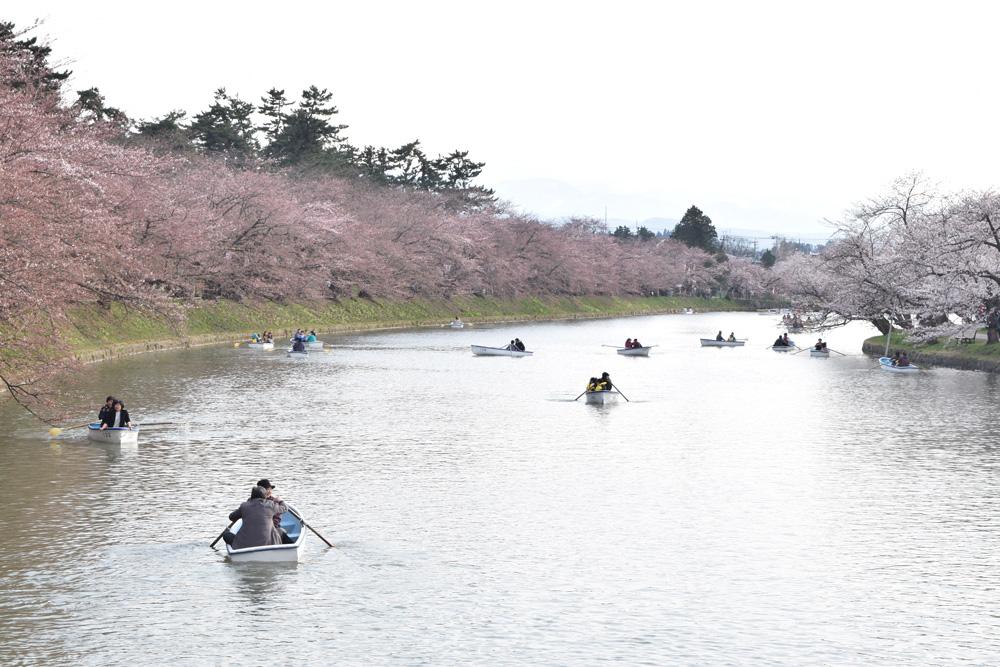 弘前公園 西濠 ボートの様子