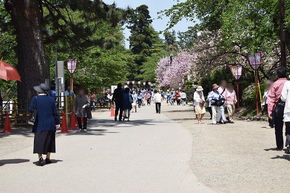 弘前公園 三の丸付近