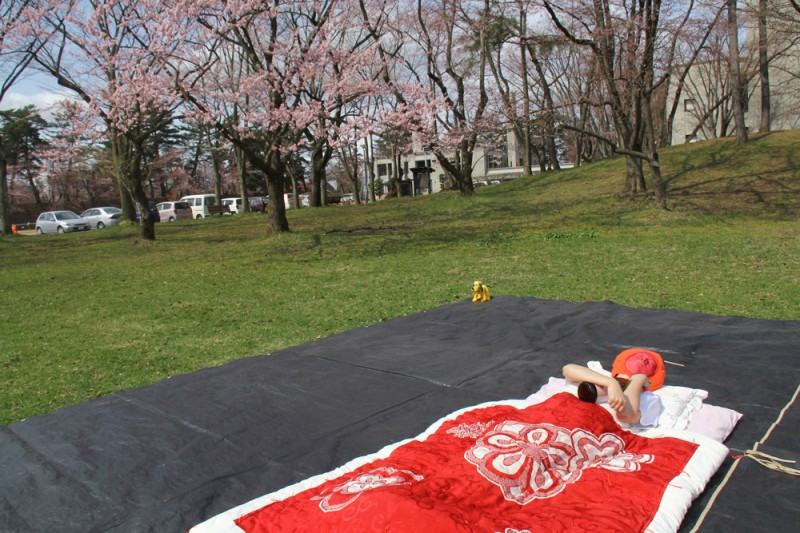 弘前公園 キャンプ禁止