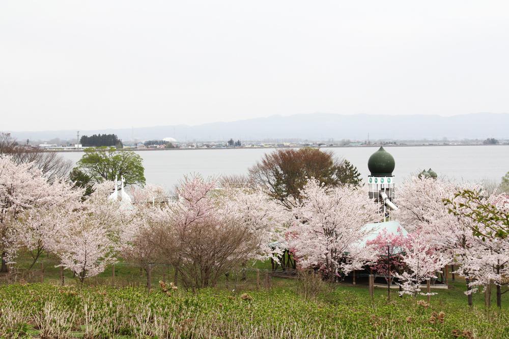 お祭り広場・富士見湖パーク