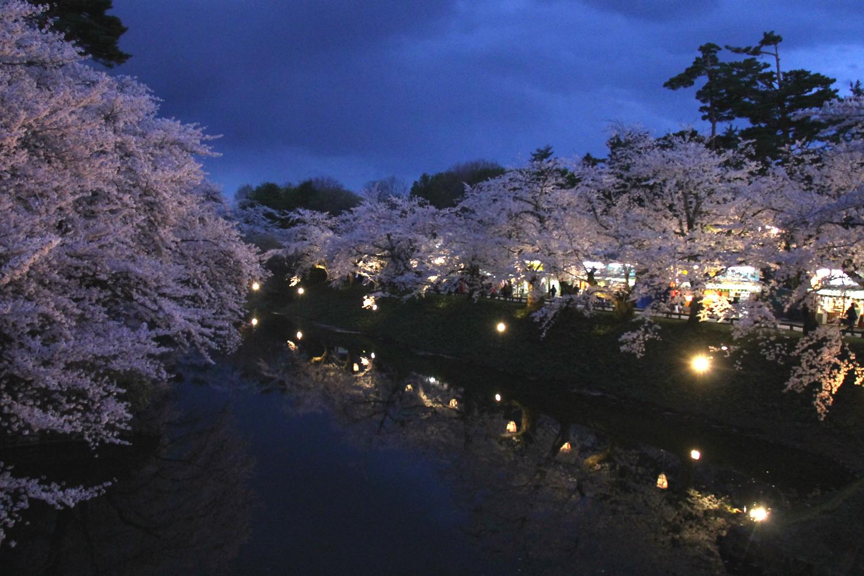 弘前公園杉の大橋の水辺に映るさくら