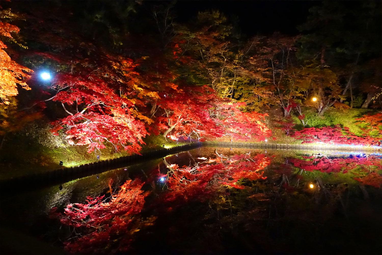 弘前公園 弘前城菊と紅葉まつり