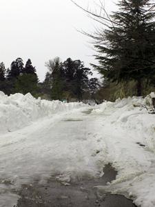 まだ少し雪が残る弘前公園