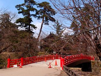 弘前公園・弘前城の南内門・杉の大橋付近の桜の枝 桜開花状況