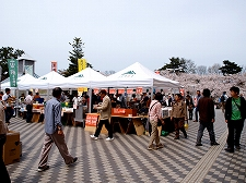 津軽のソウルフードが楽しめる「弘前さくらまつりおもてなしプロジェクト。」