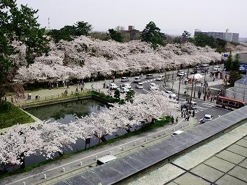 弘前市役所の屋上 2013年も一般開放