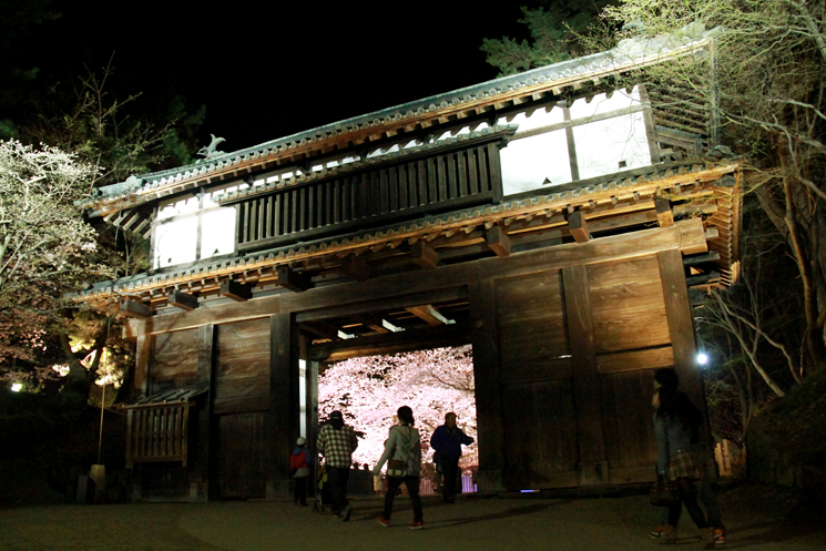 2013年5月8日(水)弘前さくらまつり夜桜の様子。ライトアップは5月12日まで!