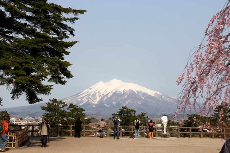 岩木山と弘前公園の桜