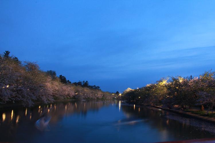 弘前さくらまつり夜桜や弘前城のライトアップ