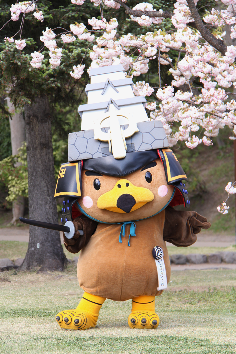 たか丸くんと写真が撮れます 弘前さくらまつり最終日!弘前城・弘前公園の様子