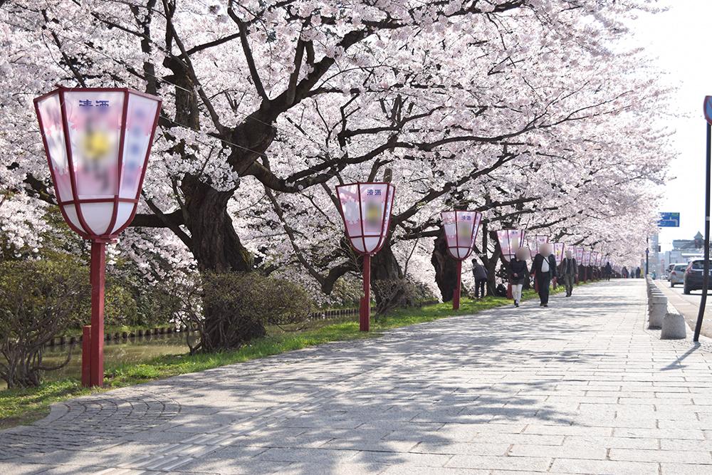 弘前さくらまつり 2015年4月23日 弘前公園・追手門口付近の様子
